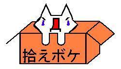 ニダネコ.jpg